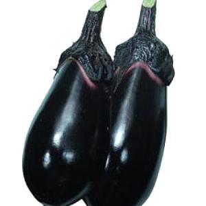 野菜の種/種子 竜馬・ナス 茄子 60粒(メール便可能)タキイ種苗|vg-harada