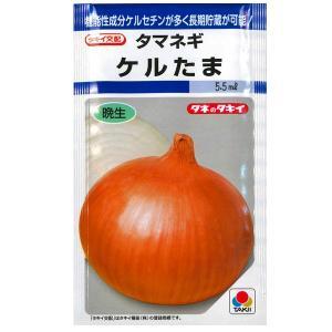 野菜の種/種子 ケルたま・タマネギ 玉ねぎ 玉葱 5.5ml(メール便可能)タキイ種苗|vg-harada