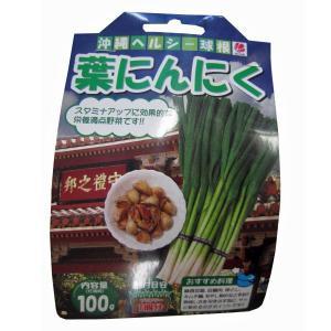 野菜の苗 食用球根 葉にんにく ニンニク 苗・種 100g入 |vg-harada
