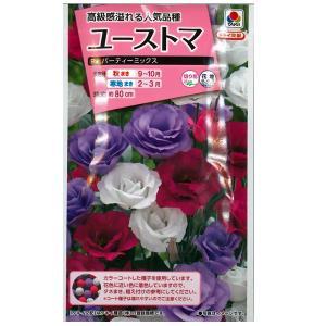 花の種 ユーストマ[F1 パーティーミックス] 15粒 (メール便可能)|vg-harada