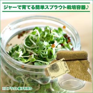 スプラウト 栽培容器(ジャー タイプ)|vg-harada