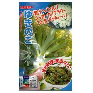 野菜の種/種子 ゆきのこ カリフラワー 40粒 (メール便可能)|vg-harada