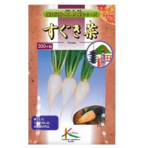 野菜の種/種子 すぐき菜・蕪 カブ 10ml (メール便可能)|vg-harada