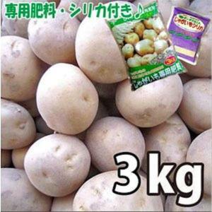 お買い得♪野菜・種/苗[春じゃがいも種芋]北海道産 男爵 男しゃく  じゃがいも種芋・生もの種 量り売り3kg+じゃがいも専用肥料+シリカ付きセット|vg-harada