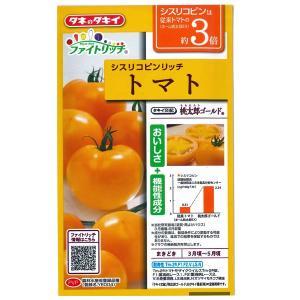 野菜の種/種子 ファイトリッチ シスリコピンリッチ 桃太郎ゴールド トマト 15粒 (メール便可能)タキイ種苗 vg-harada