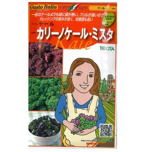 野菜の種/種子 カリーノケール・ミスタ  イタリア野菜  40粒 (メール便可能)|vg-harada