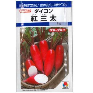 野菜の種/種子 紅三太 ダイコン だいこん 大根 8ml (メール便可能) タキイ種苗|vg-harada