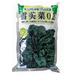 野菜の種/種子 雪美菜02 ・ちぢみほうれんそう 3万粒[緑]  (大袋)|vg-harada