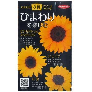 花の種 ひまわり ヒマワリ 向日葵 3種アソートパック  (メール便可能) サカタのタネ|vg-harada