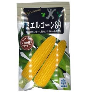 野菜の種/種子 ミエルコーン89 ・とうもろこし トウモロコシ 200粒 (メール便発送)|vg-harada