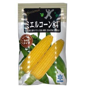 野菜の種/種子 ミエルコーン84 ・とうもろこし トウモロコシ 200粒 (メール便発送)|vg-harada