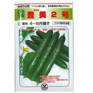 野菜の種/種子 豊美 2号 キュウリ きゅうり 350粒 (メール便発送/大袋)|vg-harada