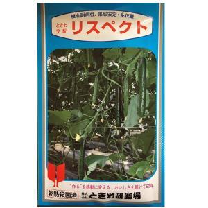 野菜の種/種子 リスペクト キュウリ きゅうり 350粒 (メール便可能/大袋)|vg-harada