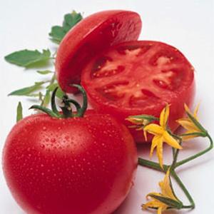 野菜の種/種子 桃太郎T93・トマト 1000粒(メール便可能/大袋)タキイ種苗|vg-harada