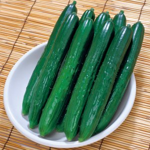 野菜の種/種子 夏のめぐみ・キュウリ きゅうり 17粒(メール便可能)タキイ種苗 vg-harada