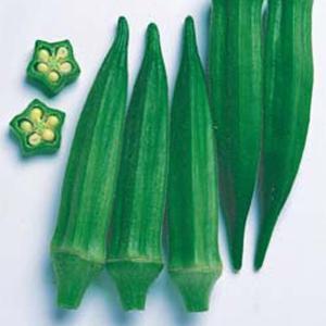 野菜の種/種子 ベターファイブ・オクラ おくら 130粒(メール便可能)タキイ種苗|vg-harada