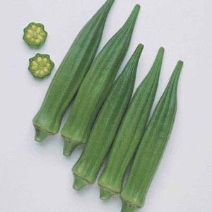 野菜の種/種子 クリムソン・スパインレス オクラ おくら 1000粒(メール便可能/大袋)タキイ種苗|vg-harada
