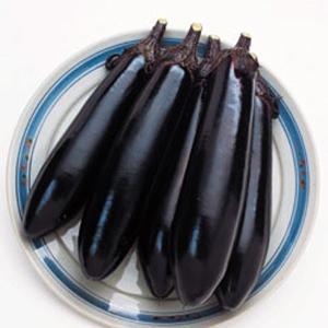 野菜の種/種子 筑陽・ナス 茄子 なす 30粒(メール便可能)タキイ種苗|vg-harada