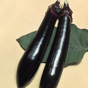 野菜の種/種子 長者・ナス 茄子 なす 70粒(メール便可能)タキイ種苗|vg-harada