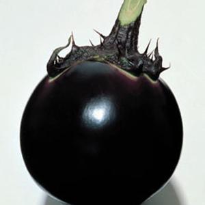 野菜の種/種子 早生大丸・ナス 茄子 なす 90粒(メール便可能)タキイ種苗|vg-harada