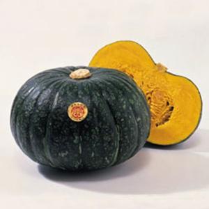 野菜の種/種子 えびす・カボチャ かぼちゃ 15粒(メール便発送)タキイ種苗 vg-harada