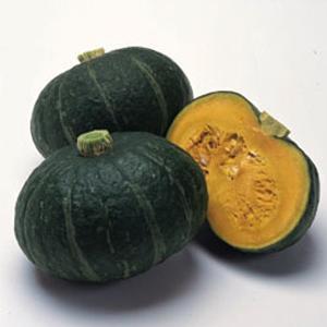 野菜の種/種子 ほっこりえびす・カボチャ かぼちゃ 100粒(メール便発送)タキイ種苗 vg-harada