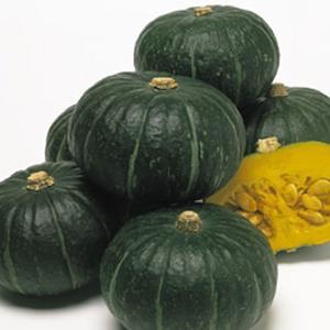 野菜の種/種子 ほっこり姫・カボチャ かぼちゃ 100粒(メール便発送)タキイ種苗 vg-harada