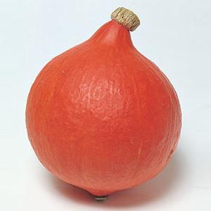 野菜の種/種子 打木早生赤栗(うつぎわせあかくり)・カボチャ かぼちゃ 100粒(メール便可能)タキイ種苗|vg-harada