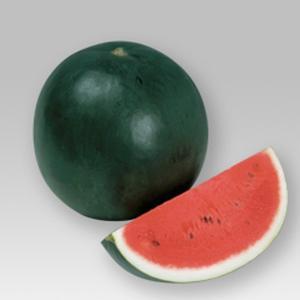 野菜の種/種子 ブラックボール2・スイカ 200粒(メール便可能)タキイ種苗|vg-harada