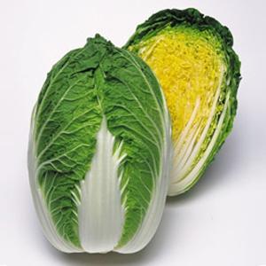 野菜の種/種子 勝春・ハクサイ 1ml(メール便可能)タキイ種苗|vg-harada