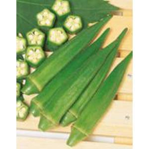 野菜の種/種子 ピークファイブ・オクラ おくら 2dl(大袋)サカタのタネ|vg-harada