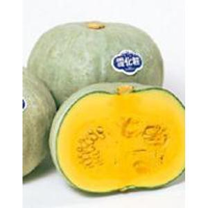 野菜の種/種子 雪化粧・カボチャ かぼちゃ 2dl缶入(大袋)サカタのタネ|vg-harada