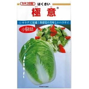 野菜の種/種子 極意 ・はくさい ハクサイ 白菜 1.3ml (メール便可能)|vg-harada