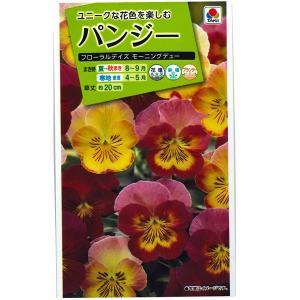 花の種 パンジー[フローラルデイズ モーニングデュー] 30粒 (メール便可能)|vg-harada