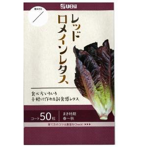 野菜の種/種子 レッドロメインレタス 50粒 (メール便発送)|vg-harada