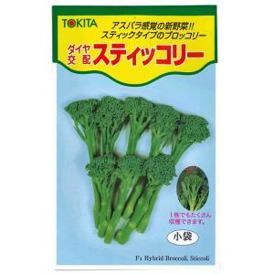 野菜の種/種子 スティッコリー・茎ブロッコリー 1ml (メール便発送)|vg-harada