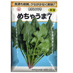 野菜の種/種子 めちゃうま7 ほうれんそう ホウレンソウ ほうれん草 法蓮草 1dl (メール便可能)|vg-harada