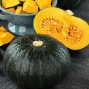 野菜の種/種子 ブラックのジョー・カボチャ かぼちゃ 100粒(メール便発送)サカタのタネ 種苗 vg-harada