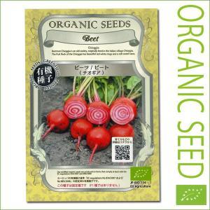 有機種子/野菜の種 ビーツ/ビート(チオギア) 2.5g (メール便発送)|vg-harada