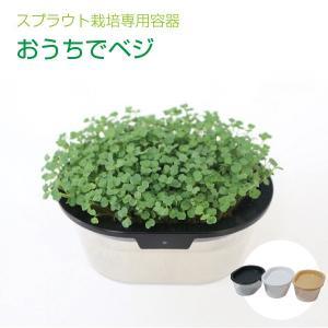 おうちでベジ スプラウト専用 栽培容器|vg-harada