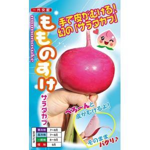 野菜の種/種子 もものすけ サラダカブ 20ml (メール便発送/大袋)ナント種苗|vg-harada