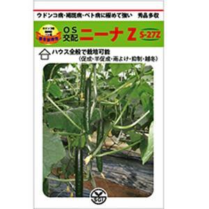 野菜の種/種子 ニーナZ S-27Z  350粒 キュウリ きゅうり (メール便発送/大袋)|vg-harada
