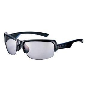 スワンズ SWANS DF 偏光レンズモデル BK YSW-DF-0053BK|vic2
