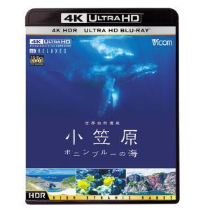 世界自然遺産 小笠原 〜ボニンブルーの海〜【4K・HDR】Ultra HD ブルーレイ|vicom-store