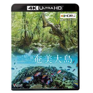 奄美大島〜いのち紡ぐ島〜 4K・HDR 4K Ultra HDブルーレイ ビコムストア|vicom-store