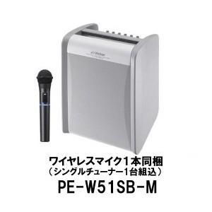 ポータブル ワイヤレスアンプ PE-W51SB-M(シングル...