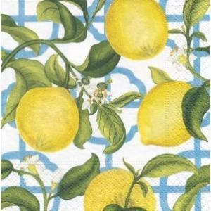 ペーパーナプキン デコパージュ SEVILLE LEMON M レモン 10枚セット|victoriadesign