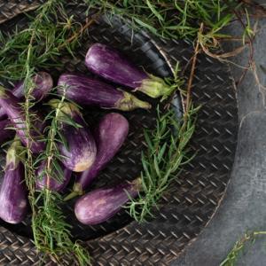アンダープレート 皿 チャージャープレート メッシュ・ブラックゴールド 洋食器 アンティーク調 おしゃれ カフェ|victoriadesign