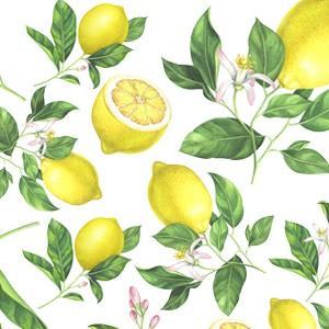 ポーセラーツ 転写紙 フルーツ JUICY LEMON (ジューシーレモン)|victoriadesign