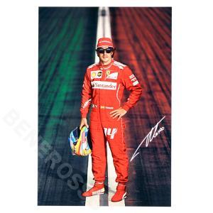 フェラーリ 2014 SF オフィシャル ドライバー カード F.アロンソ  (返品・交換対象外)|victorylap